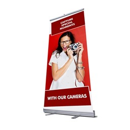 Bild von Roll Up Display (85x200) mit Stamoid Decolit 251